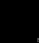 135px-Wiktionary-logo-ka_copy.png