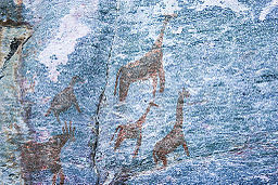 Animals Rock Art Tsodilo