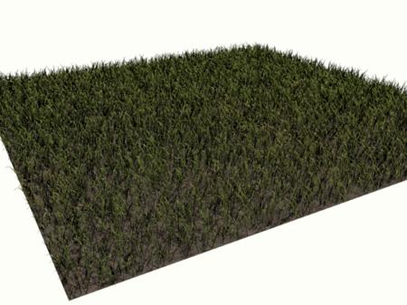 Blender Dokumentation Tutorials Partikel Statische Partikel Gras
