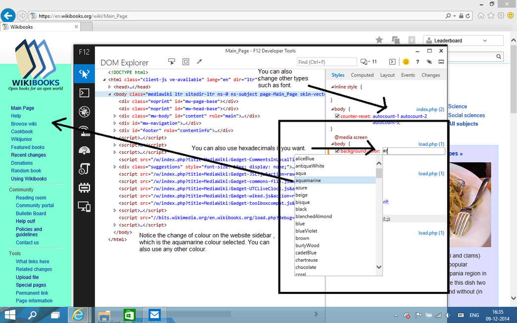 Styles tab in DOM Explorer in Developer Tools for IE11.png