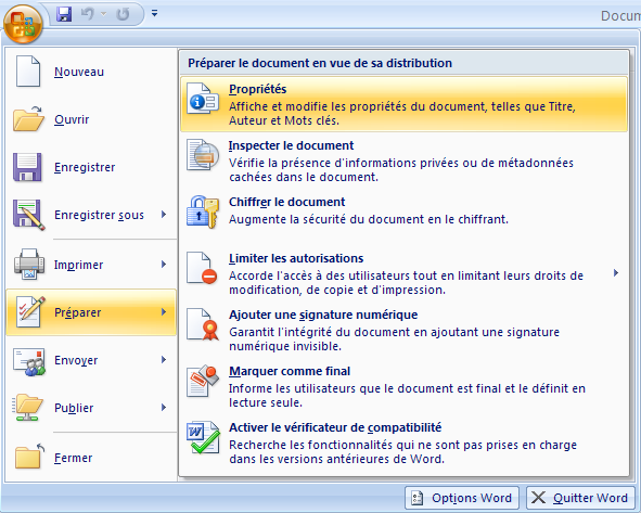 Microsoft word 2007 menu proprietes.png