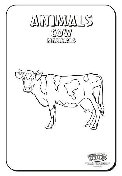 Cow-coloring-pages.jpg