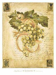 tidak berbuah Perumpamaan Yesus / Pokok anggur yang benar Pukat
