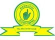 MamelodiSundowns.png