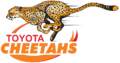 Logo Cheetahs Rugby.png