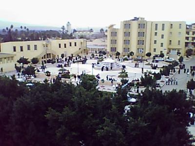 صور من مدينة الشلف (الجزائر) Univer_chlef