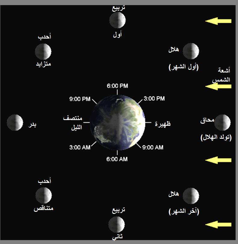 السنة الشمسية والقمرية.من إعجاز القرآن العلمي Lunar-Phase-Diagram_