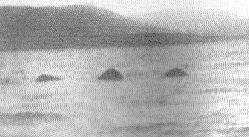 ملف:وحش لوخ نس 1933.jpg