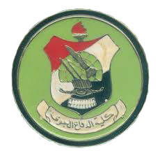 Egypt Air Defense College.jpg