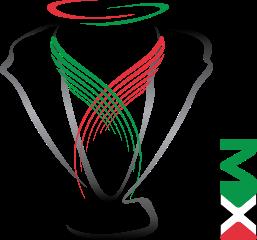 Sitio oficial de LIGA MX del fútbol mexicano con partidos clubes resultados y estadística en línea directo desde el campo de juego