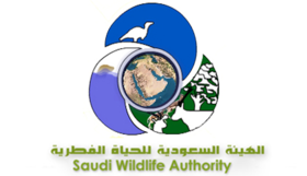 Saudi Wildlife Authority.png