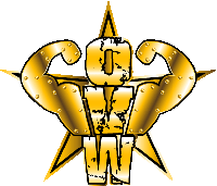 Ohio Valley Wrestling logo.png