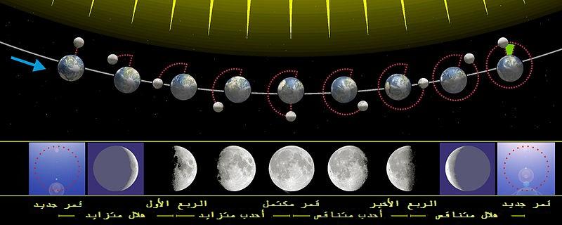 التغيرات الزاوية الشهرية بين اتجاه الإضاءة من الشمس والمظهر من الأرض وطور القمر كنتيجة.