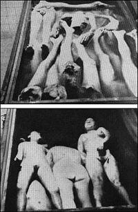معنى كلمة هولوكوست 200px-Holocaust_2006.jpg