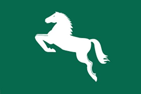 Flag of Sharkiya Governorate.png
