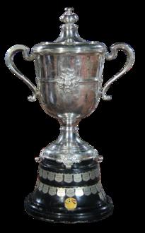 كأس مصر ويكيبيديا