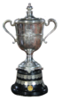 Egyptian Cup (football).png