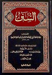 كتاب سنن ابن ماجه pdf
