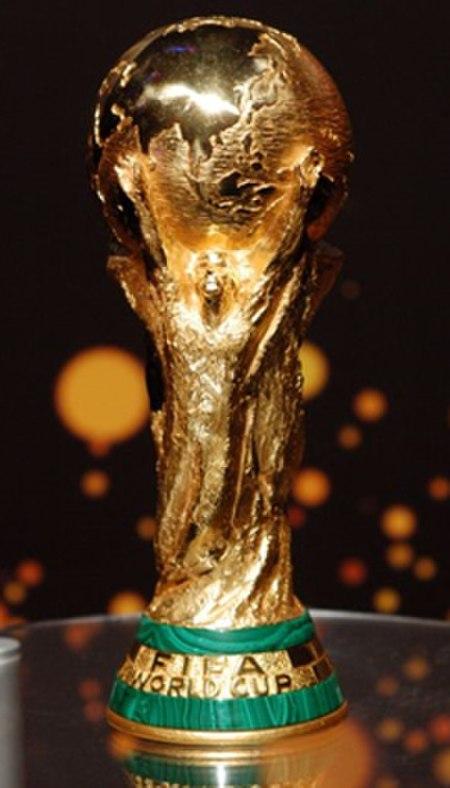 Fifa world cup org.jpg