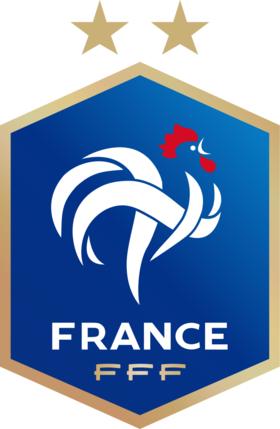 عن الموضوع اتحاد فرنسا لكرة القدم