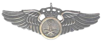 RSAF Aviator badge.png