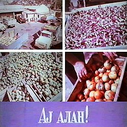 Ay alan! (film, 1981).jpg