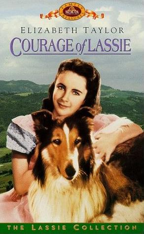 01 Courage of Lassie.jpg