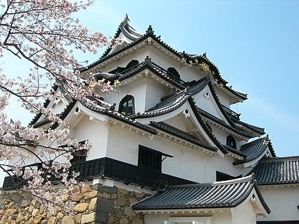 彦根城天守閣と桜(その2)。