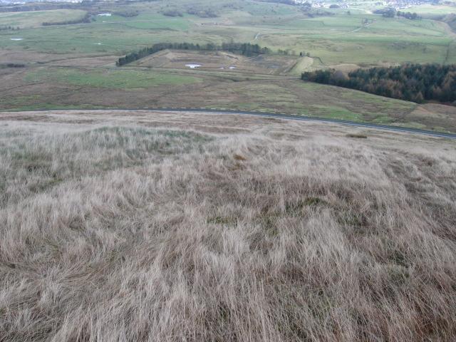 Axe Edge hillside towards Stanley Moor - geograph.org.uk - 1571789