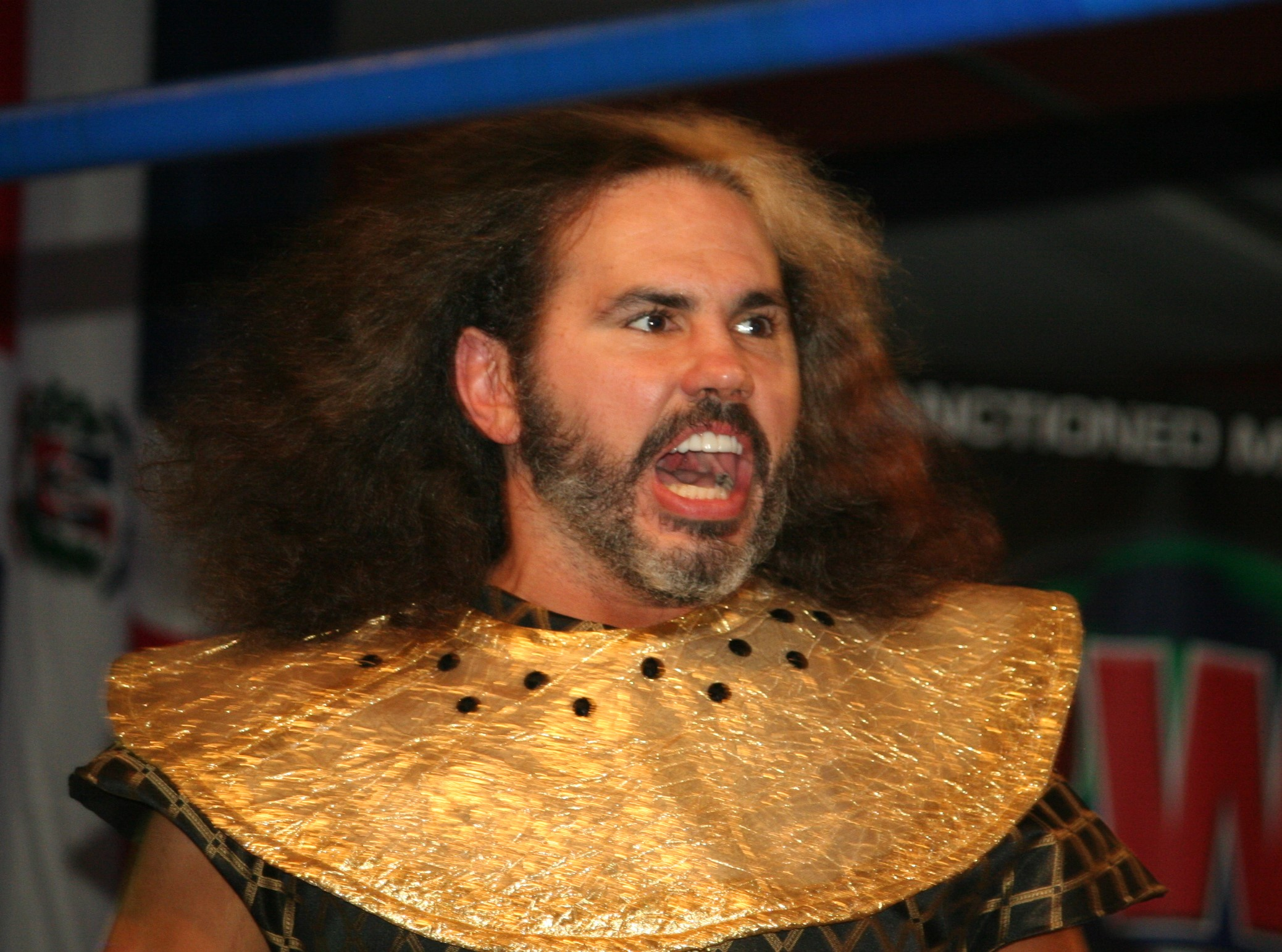 Matt Hardy Wikipedia