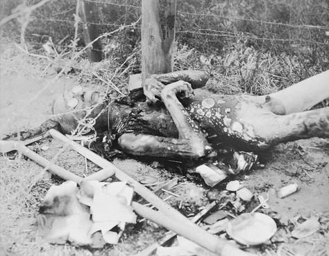 File:Buchenwald Leipzig-Thekla Corpse 4.jpg
