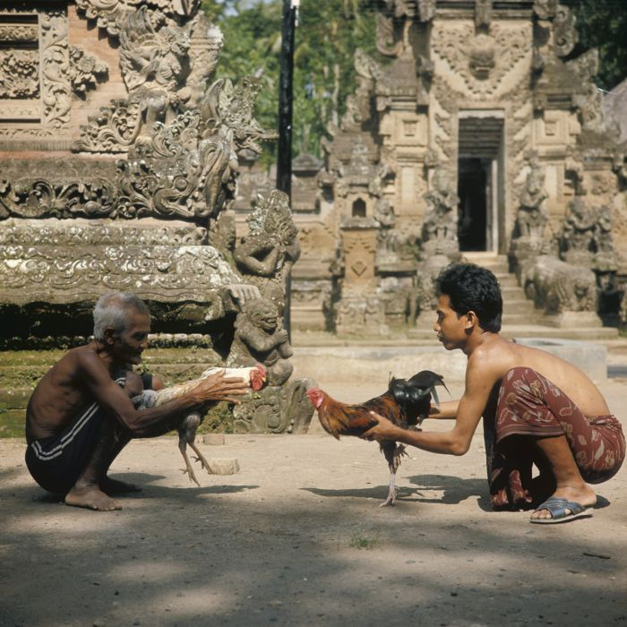 bali bali craft essay niskala niskala sekala sekala society tradition Bali - sekala and niskala essays on society, tradition, and craft [fred b  eiseman jr] on amazoncom free shipping on qualifying offers in depth.