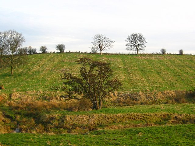 File:Coldale - geograph.org.uk - 141220.jpg