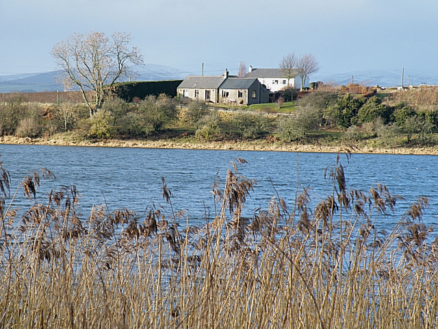 Cottages by Forfar Loch - geograph.org.uk - 1131003