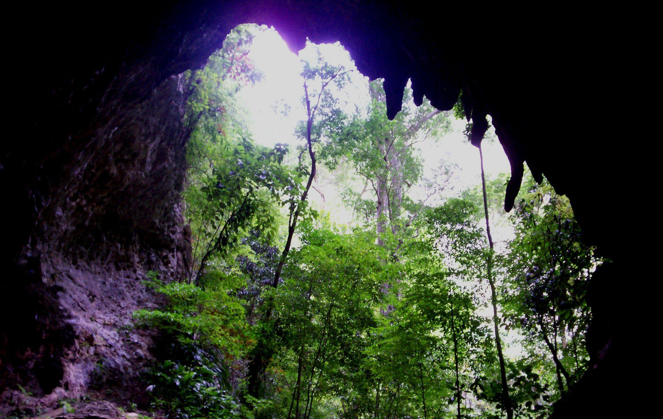 Depiction of Parque nacional Cueva de la Quebrada del Toro