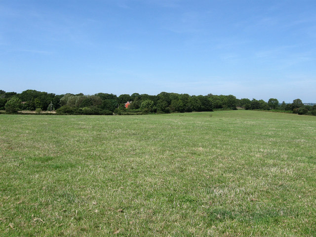 Ditchling Common - geograph.org.uk - 1450759