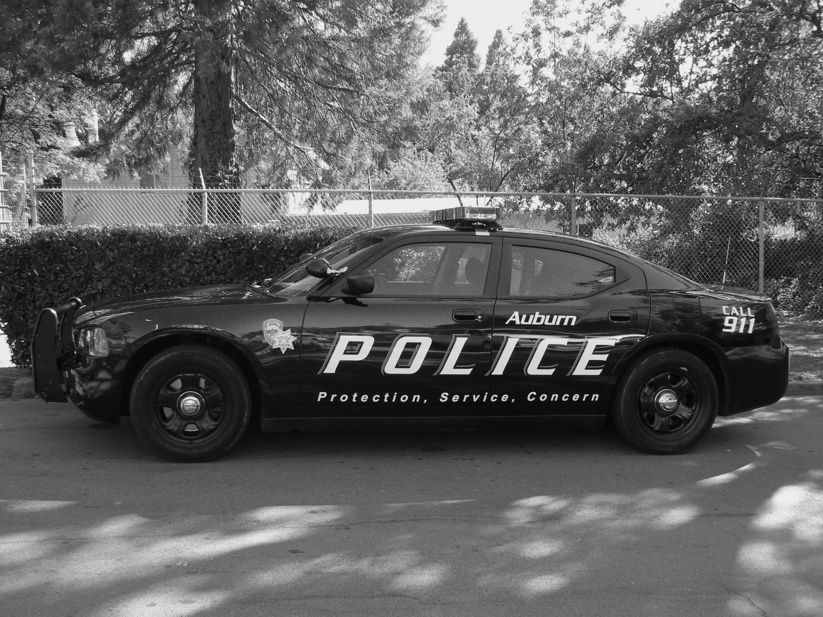 Sexy black and white police car picture aunty