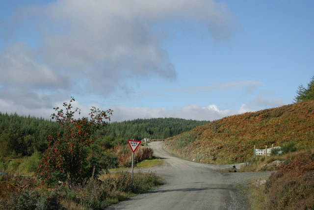 Eastern end of Carrick Forest Drive - geograph.org.uk - 1522173