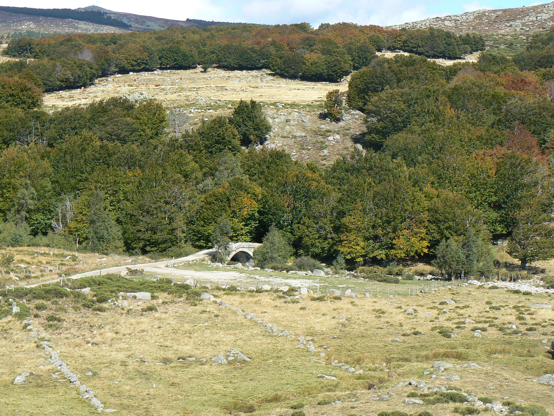 Le parc National des Cévennes un écrin de nature magnifique