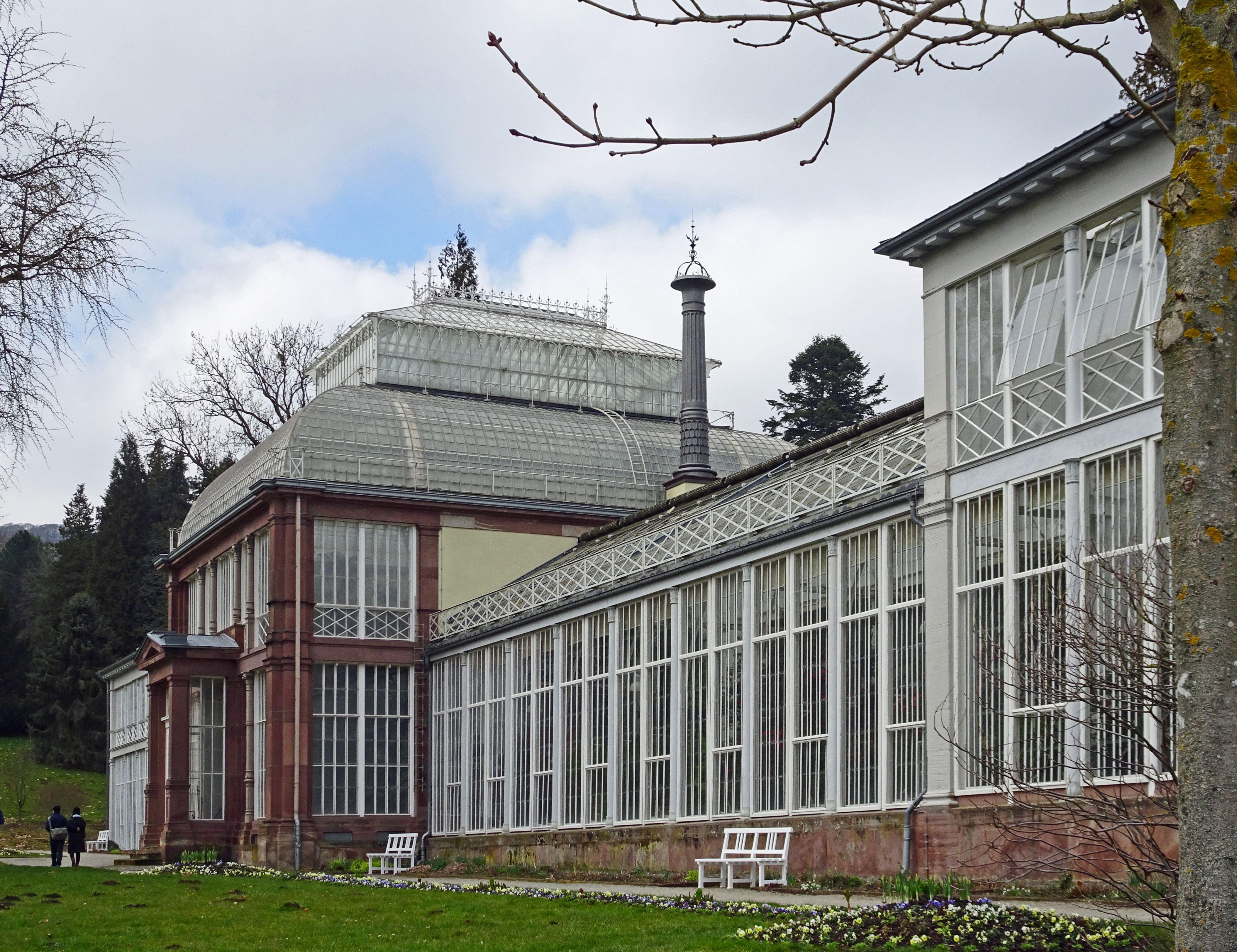 File Grosses Gewachshaus Kassel 2 Jpg Wikimedia Commons