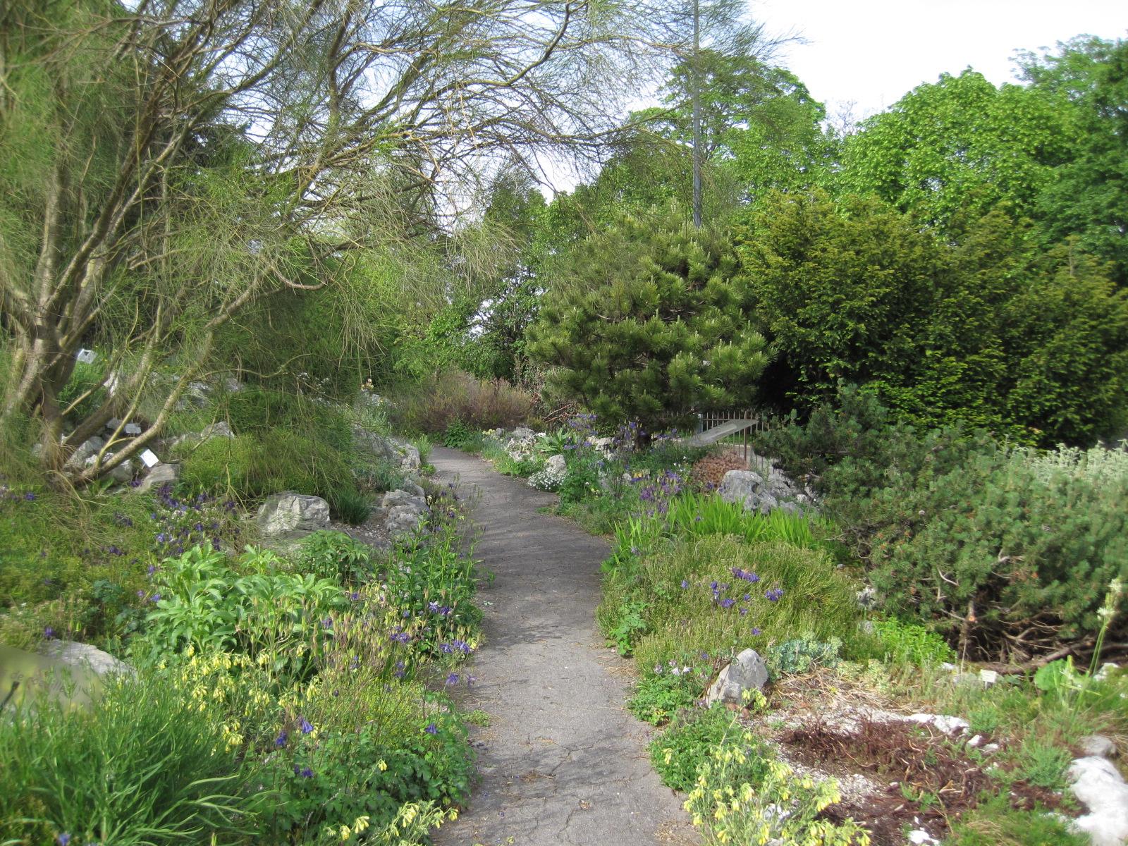 Jardin botanique de besan on for Botanique jardin