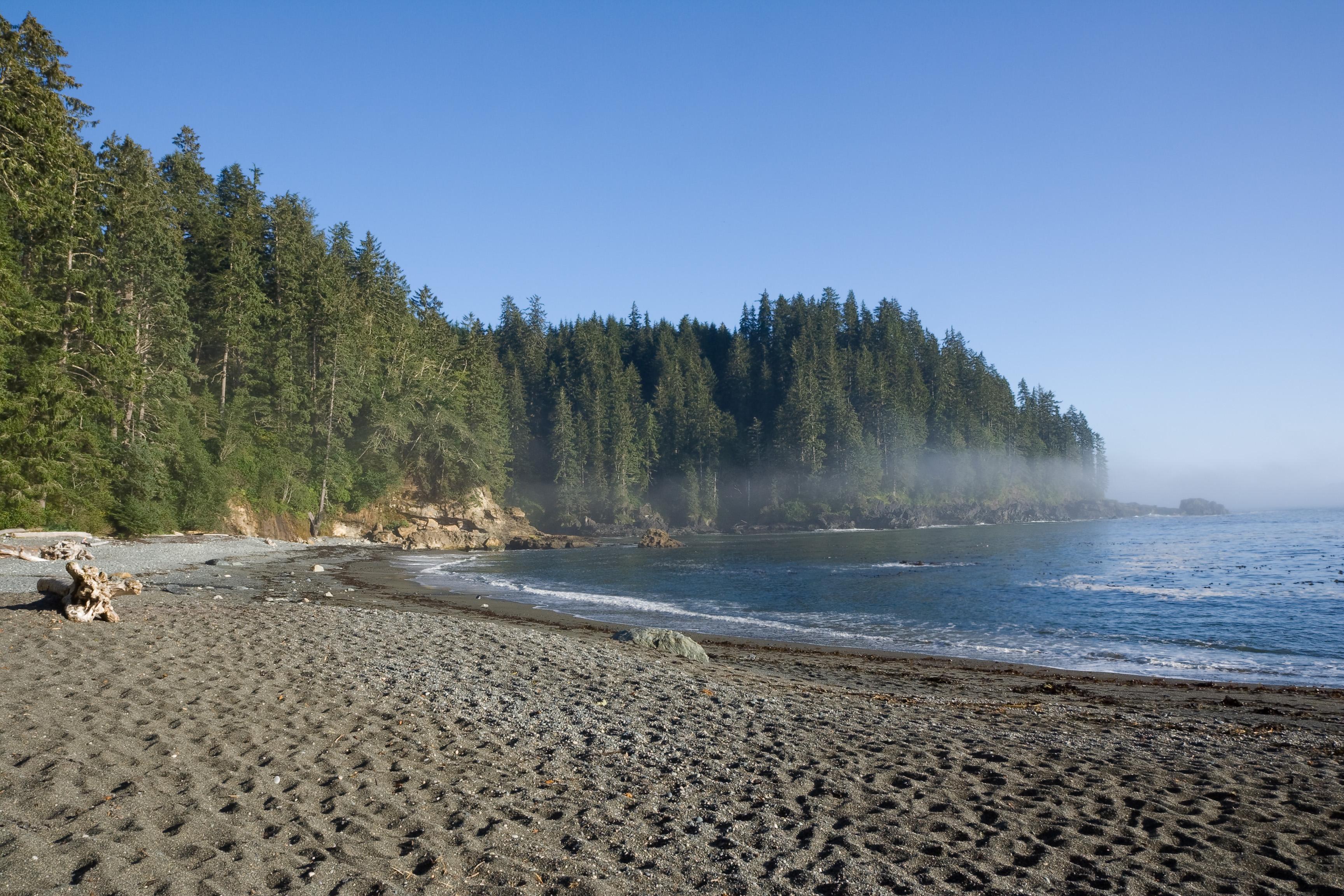 Juan De Fuca Trail Vancouver Island