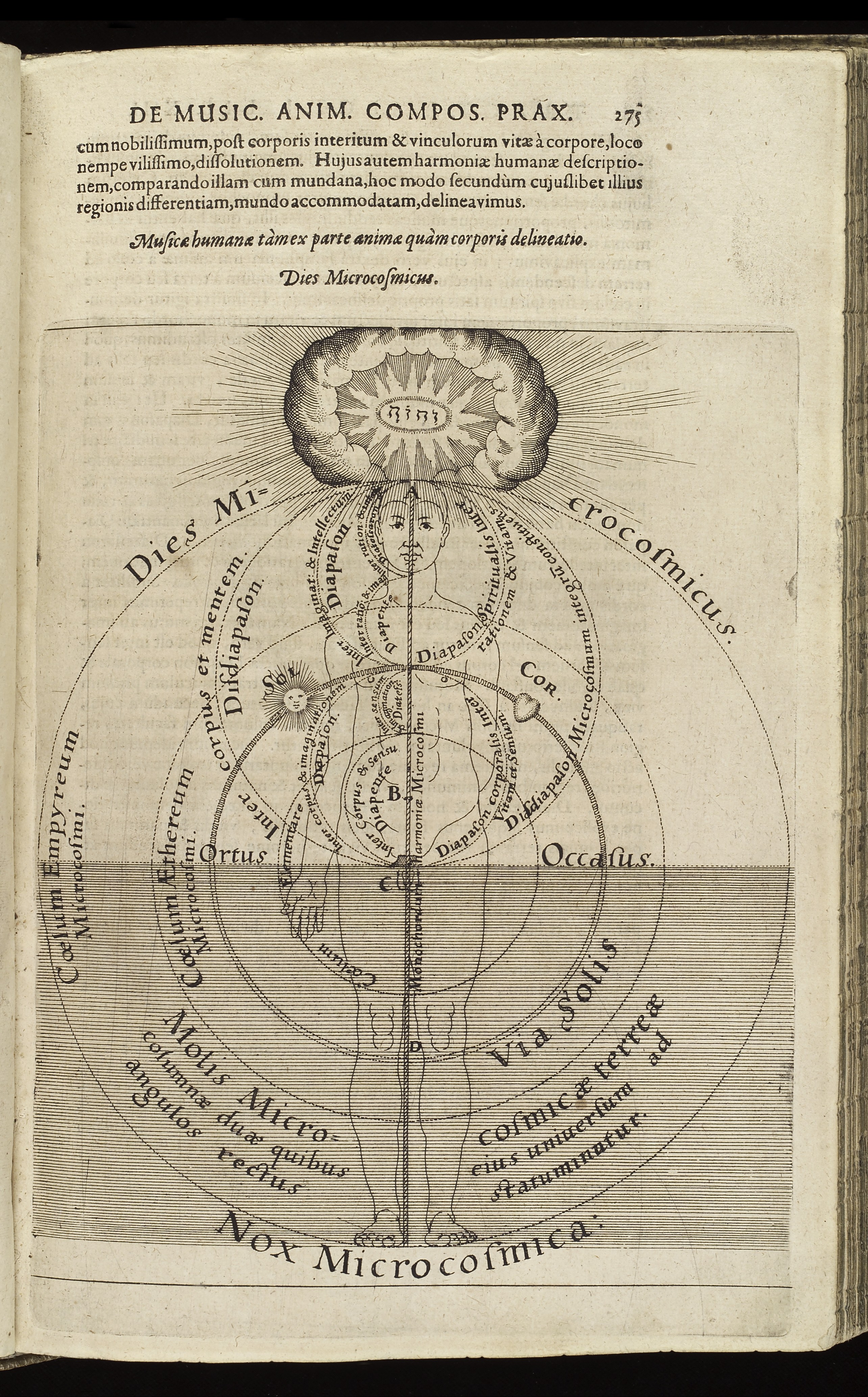 Man The Microcosm C Robert Fludd C C Wellcome L on Work Diagram