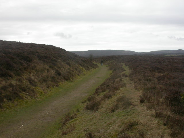 Middlebere Plateway - geograph.org.uk - 1201952