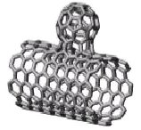 NanoBud