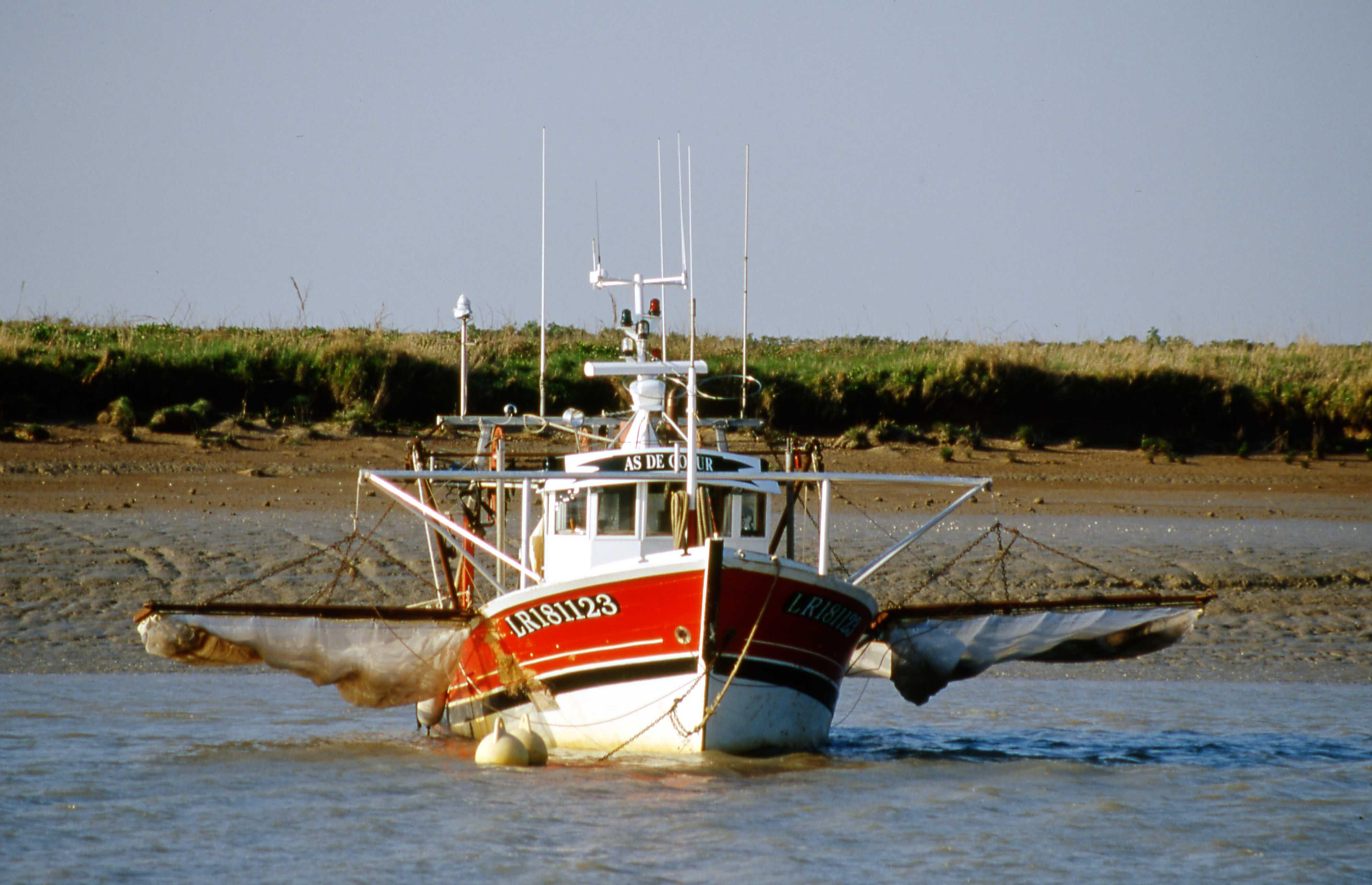 Vidéo la pêche sur lest lointain regarder