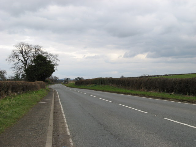 Quiet Road - geograph.org.uk - 726696