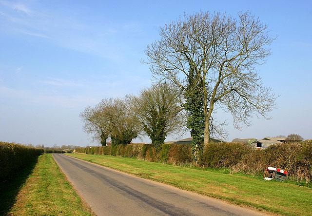 File:Road near Barton Hartshorn - geograph.org.uk - 393415.jpg