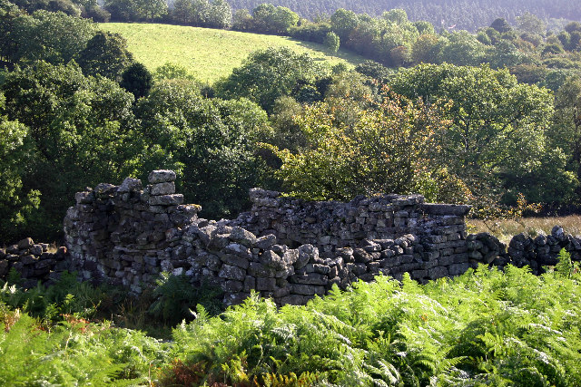 Ruin in the Seven Valley, Rosedale - geograph.org.uk - 75291