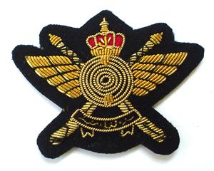 Sultans Special Forces Special operations branch of Omans military forces